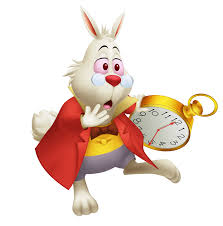 rabbit with watch